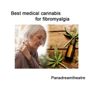 Best medical cannabis for fibromyalgia