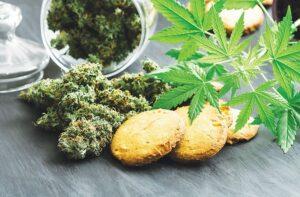 CBD Cookies Recipe