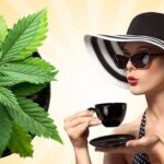 Marijuana Tea. CBD tea effects. Benefits And Uses.