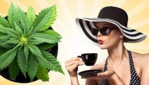 Marijuana Tea. CBD tea effects. Benefits And Uses.