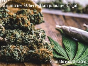 Сountries Where Marijuana is Legal