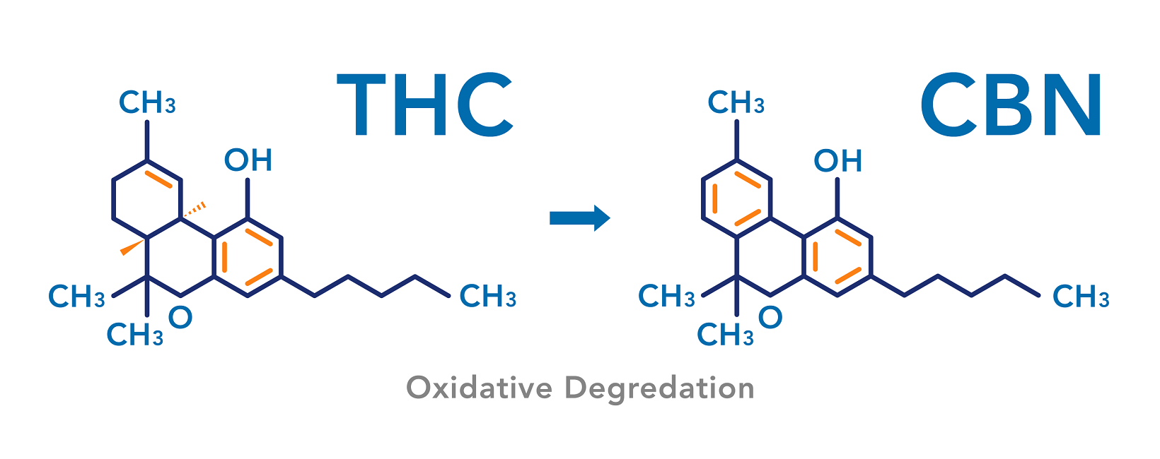 Converting THC to CBN