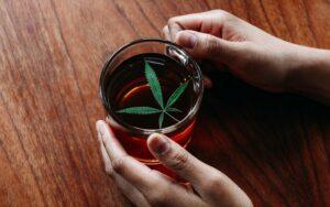 Reasons to Start Drinking ganja Tea
