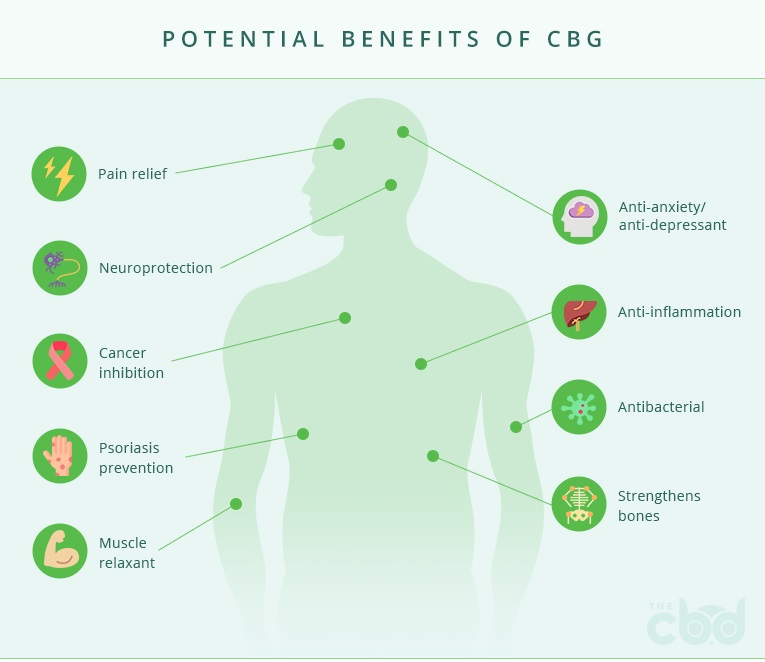benefits of cbg