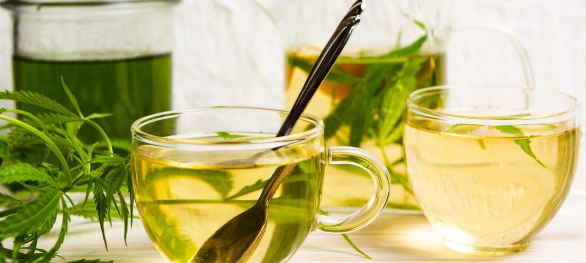 Marijuana leaf tea Benefits, Effects, Recipe & Dosages