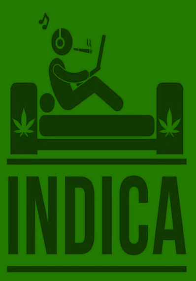why are sativa and indica highs different