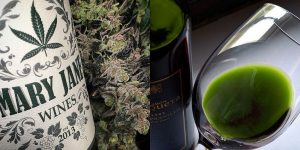 Weed Wine | Everything You Need To Know About Cannabis Infused Wine