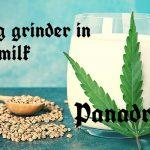 Boiling grinder in milk