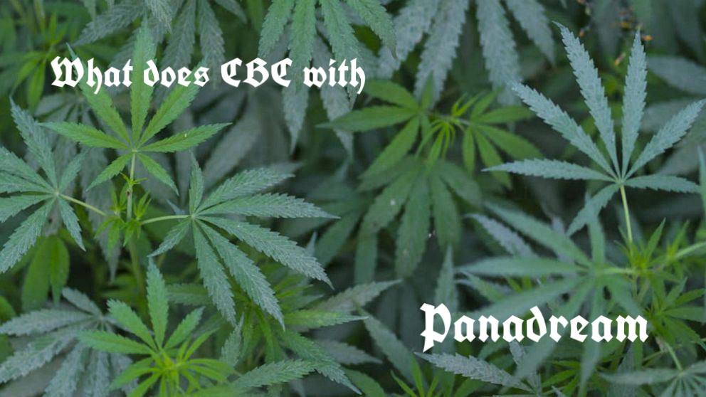 What does cbg help with
