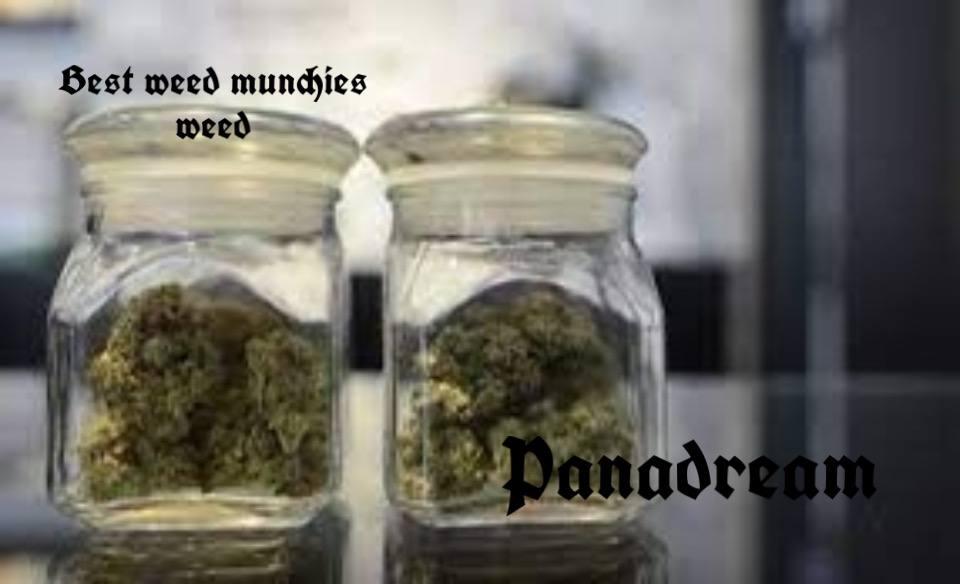 Best weed munchies