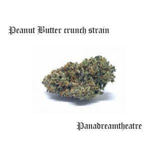 Peanut Butter crunch strain