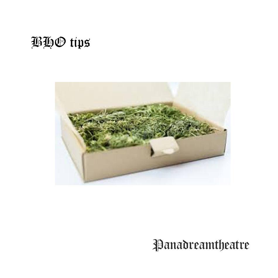 BHO tips
