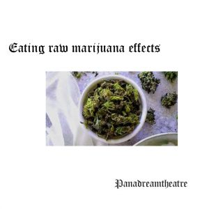 Eating raw marijuana effects