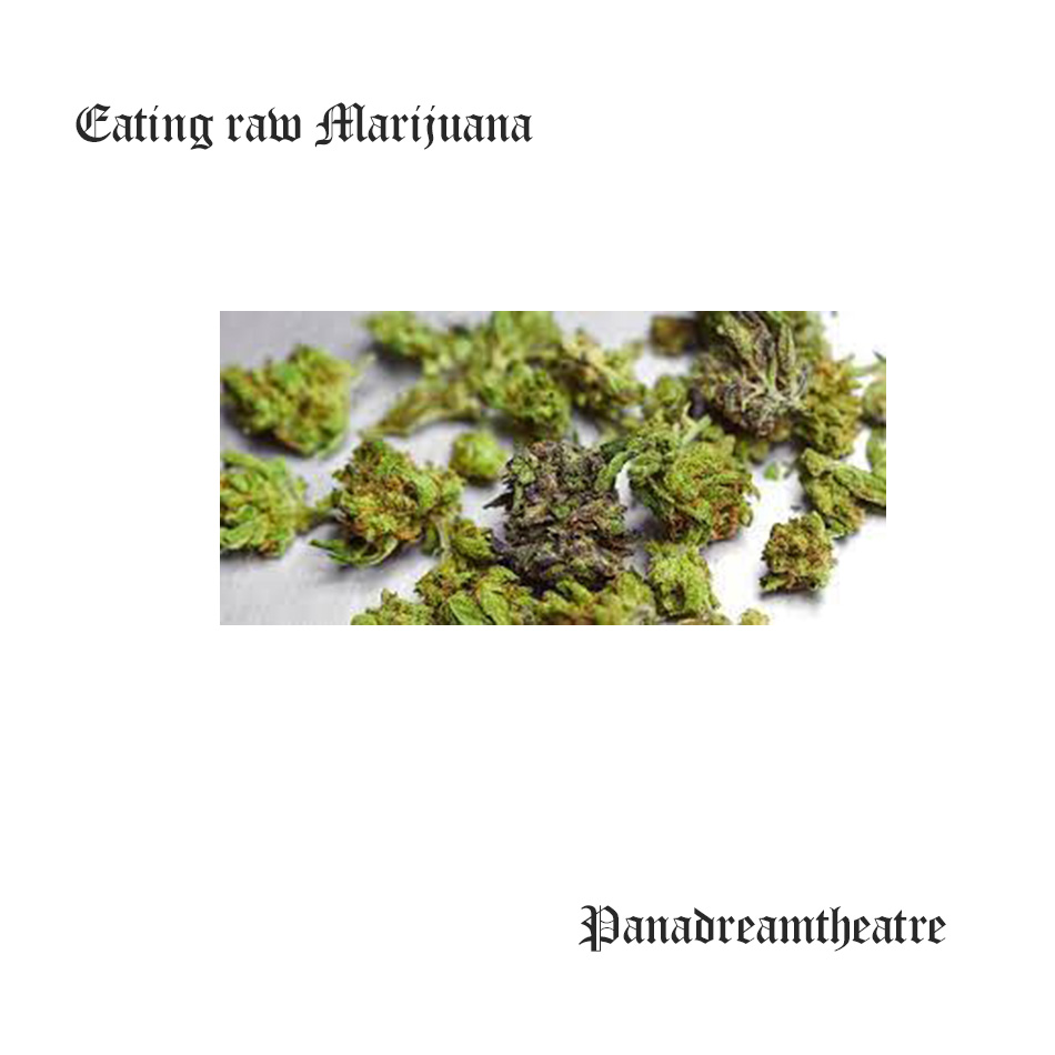 Eating raw marijuana