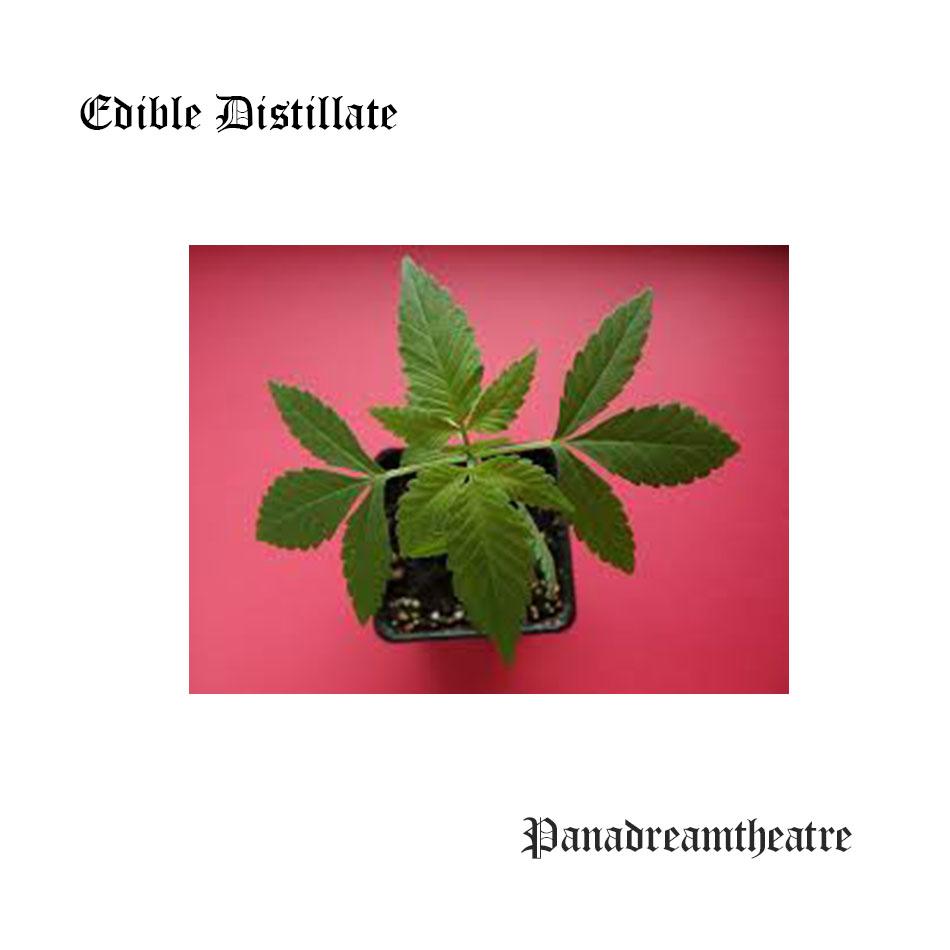 Edible Distillate