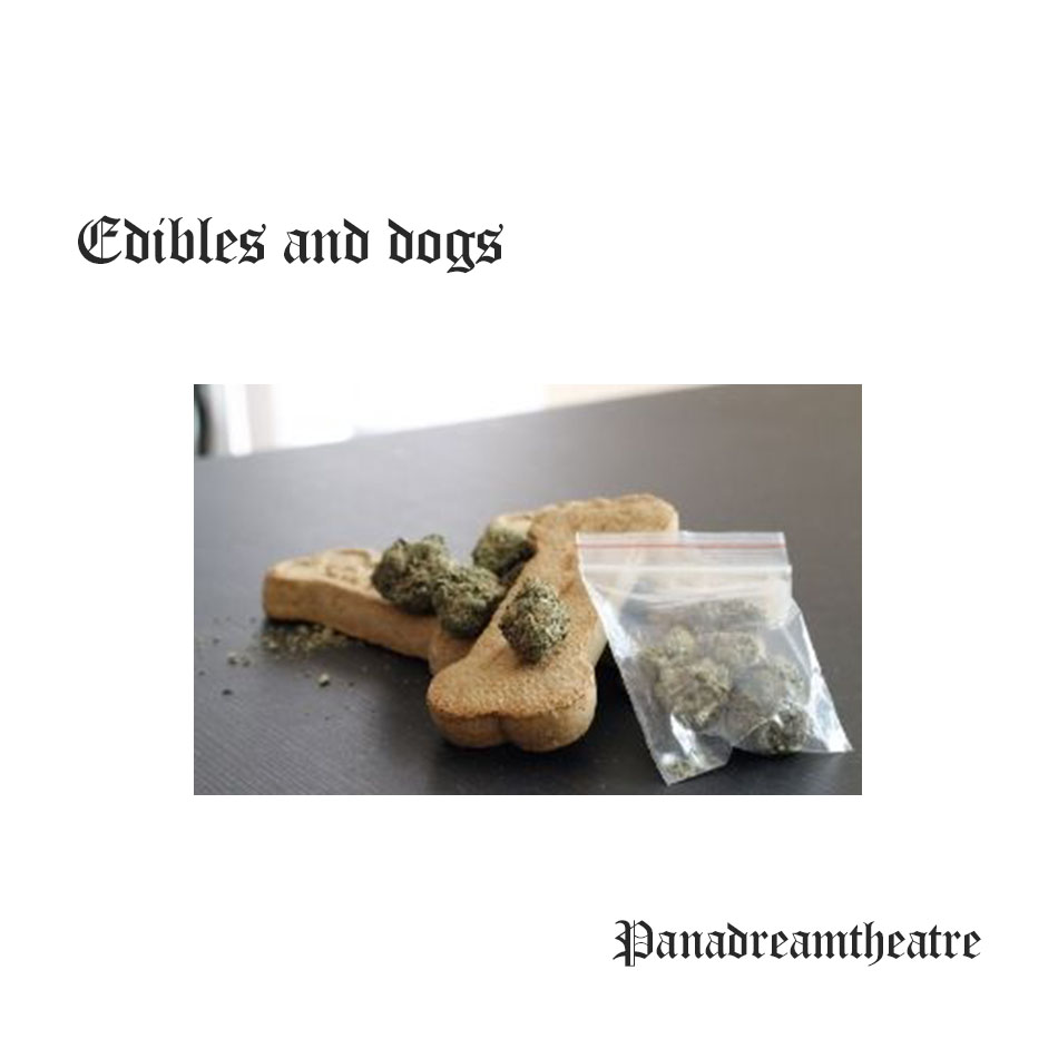 Edibles and dogs